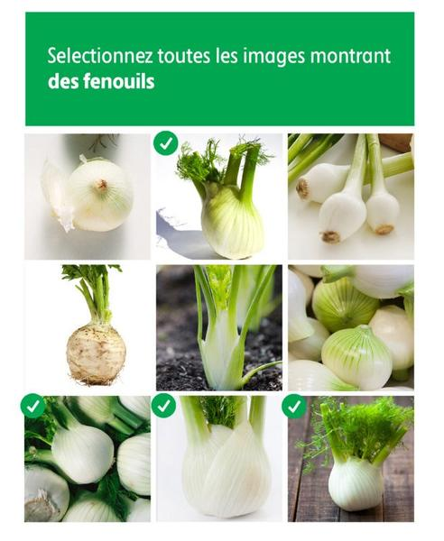 Intermarche_captcha_communication_enseigne